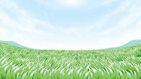 Cordon vert Image stock