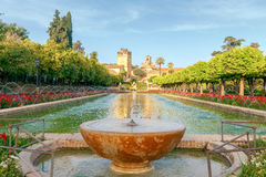 Cordova. Royal palace of the cristian kings Stock Image