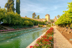 Cordova. Royal palace of the cristian kings. Flowering gardens and fountains of the Alcazar de los Reyes Cristianos, Cristian royal palace of the Kings, Cordoba Royalty Free Stock Photo