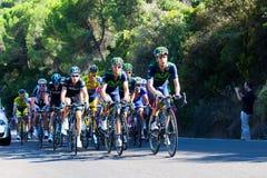CORDOVA, SPAGNA - 26 agosto 2014: Alejandro Valverde (gruppo di Movistar) nel gruppo principale, durante la fase di La Vuelta Fotografia Stock Libera da Diritti