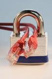 cords det låsta Ethernetet Arkivfoto