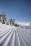 Corduroy 1. A closeup perspective of a perfectly groomed ski run Royalty Free Stock Image