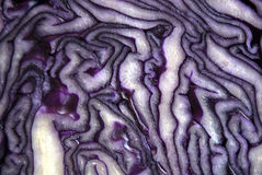 Core and inside patterns of a red cabbage Stock Photo