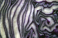 Core and inside patterns of a red cabbage Royalty Free Stock Photos