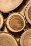 Core of juniper and sandalwood background Stock Photography