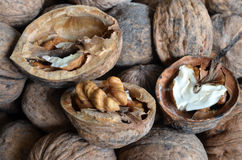 Core walnut in the form of heart Stock Photos