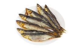 Coregone affumicato del pesce sul piatto su bianco Immagini Stock