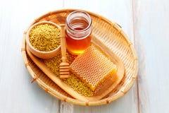 Coregone lavarello dell'ape Immagine Stock Libera da Diritti