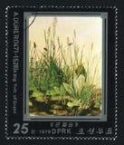 COREIA DO NORTE - CERCA DE 1979: Um selo do cargo impresso na Coreia do Norte mostra um topete grande da grama por Albrecht Durer Imagem de Stock Royalty Free