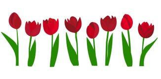 ? 五颜六色的郁金香花束在平的设计的 r 郁金香花束,隔绝在白色背景 库存例证