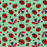 Corel seamless pattern. Cartoon red ladybugs on a blue background mint Royalty Free Stock Photo