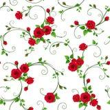 Безшовная картина с красными розами r стоковое изображение rf