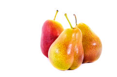 Corella pear Stock Photography