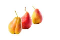 Corella pear Royalty Free Stock Image