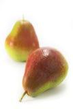 Corella pears. Stock Photos