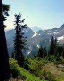 Cores bonitas da queda no padeiro 4 do Mt Fotos de Stock Royalty Free