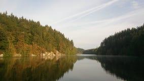 Cores bonitas das árvores no outono pelo rio Vltava na república checa imagem de stock royalty free
