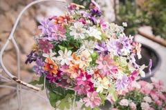 Cores bonitas de flores plásticas no fundo da natureza, c doce fotos de stock