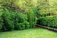Cores bonitas do parque da natureza na primavera imagens de stock royalty free