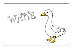 Cores: branco ilustração stock