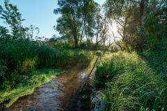 Cores brilhantes do alvorecer no rio no verão foto de stock