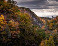 Cores da queda do outono fotos de stock