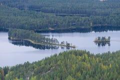 Cores da queda - tempo do ruska em Lapland Fotografia de Stock