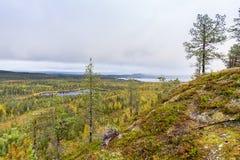 Cores da queda - tempo do ruska em Lapland Imagem de Stock Royalty Free