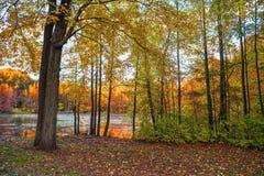 Cores da terra do lago foto de stock royalty free