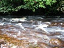 Cores de água Imagem de Stock