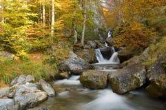 Cores de Automnal nos pyrenees franceses Imagens de Stock Royalty Free