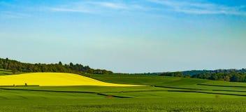 Cores de contraste do lado do país de Shropshire Paisagem imagens de stock