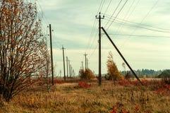 Cores do campo e da floresta no outono com cabo fotos de stock royalty free