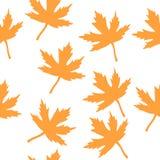 Cores 9 do outono Imagens de Stock Royalty Free
