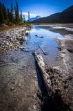 Cores do outono da lagoa do muralha Fotos de Stock Royalty Free