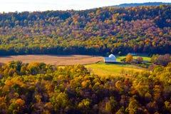 Cores do outono da natureza Foto de Stock Royalty Free