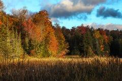 Cores do outono de Vermont foto de stock royalty free