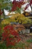 Cores do outono em Akita Fotos de Stock