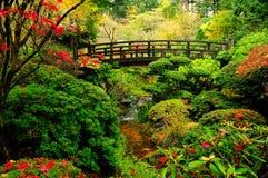 Cores do outono em um parque Fotografia de Stock Royalty Free