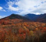 Cores do outono, montanhas fumarentos Imagem de Stock