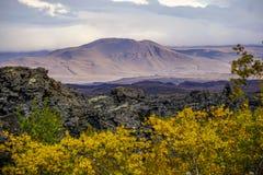 Cores do outono nos campos de lava de Dimmuborgir perto de Myvatn no norte de Islândia fotos de stock