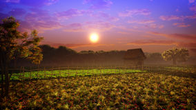 Cores do por do sol da paisagem da fantasia Imagens de Stock