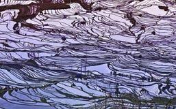 Cores do por do sol em terraços do arroz Fotos de Stock Royalty Free