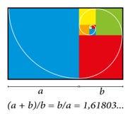 Cores douradas da fórmula da espiral do corte Fotografia de Stock