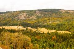 Cores em mudança na queda na serra Nevada Valley Fotos de Stock Royalty Free