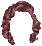 Cores na moda do rosa do opper do  dos cabelos Ñ da mulher Forma da beleza Foto de Stock