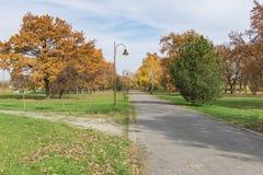 Cores no outono Fotografia de Stock