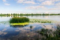 Fim da tarde no rio de Dnieper em Kiev Imagem de Stock