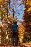 Cores profissionais do outono do tiro do fotógrafo Imagem de Stock