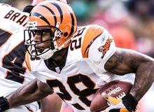 Corey Dillon Cincinnati Bengals arkivfoto